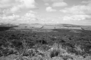 road across the moor