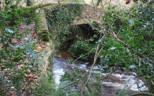 Packhorse Bridge Exmoor
